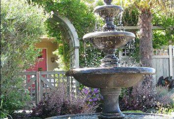 jardín de la fuente va a decorar su sitio