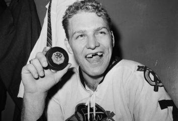 jugador de hockey Bobby Hull: biografía y foto
