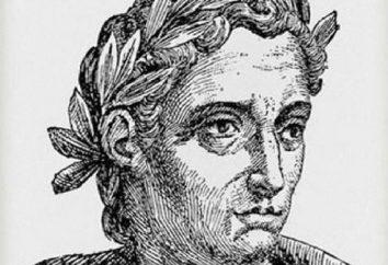 Plinio el Joven: biografía y patrimonio