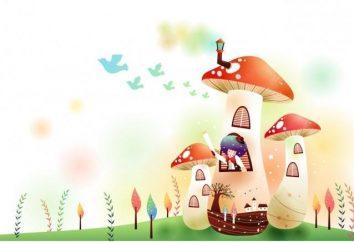 Conto de fadas no jardim de infância – Educação e correção de comportamento crianças