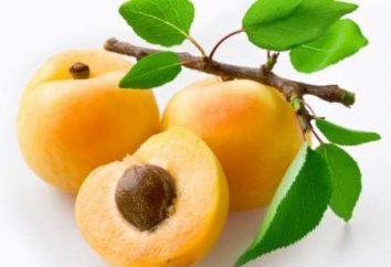Abricot utile que objet d'une enquête