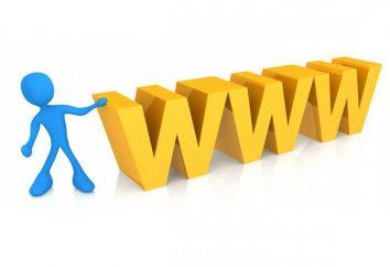 Qu'est-ce que WWW: l'histoire du World Wide Web