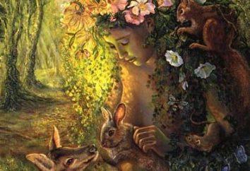 Nymph – ein großer Gott oder ein mysteriöser Geist der Natur?