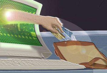 Elektronische Geldbörsen – eine Laune oder Notwendigkeit?