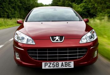 Fahrzeug Peugeot-407 – Trendsetter