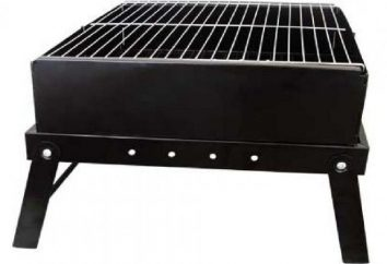 barbecues portables pour interroger: que choisir