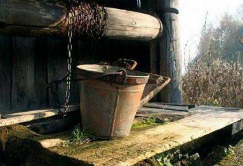 Jak zrobić drewnianą studnię z rąk?