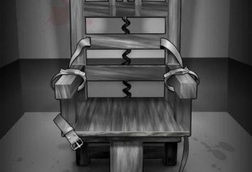 Krzesło elektryczne – do kogo i po co?