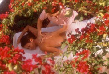 Vaporiser aider aphrodisiaque revivez sentiments sexuels uniques
