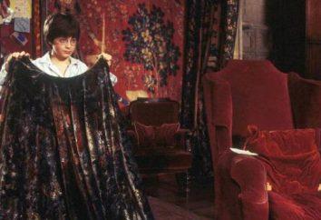 Chi ha regalato il Mantello Harry Potter: le proprietà degli oggetti e altri artefatti magici mondo magico
