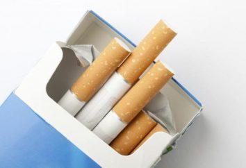 Warunki i czas przechowywania papierosów