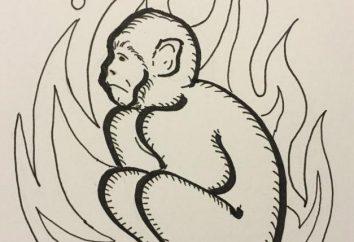Capra e Monkey: Compatibilità visionari allegri