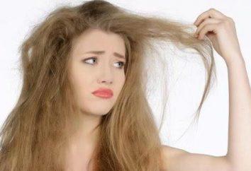 Os melhores cortes de cabelo no cabelo macio
