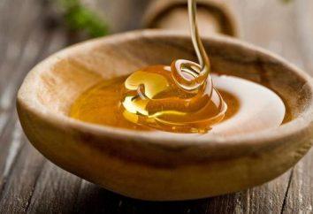 Miel avec du fromage blanc. Des plats délicieux et sains