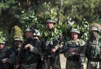 Odpowiedzialność za brak mobilizacji na Ukrainie. Jak legalnie i za darmo do porzucenia mobilizację
