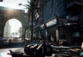 Una breve FAQ sul gioco da DICE. Come eseguire Battlefield 3? Il problema con il gameplay e la loro soluzione