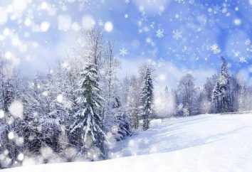 o statusach śniegu: dzielenie się radością z innymi