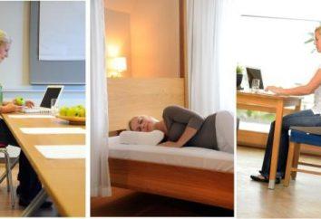 oreillers orthopédiques pour les sièges: l'utilisation et les caractéristiques d'utilisation