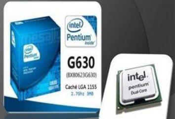 Procesor Pentium g630: Intel oferuje doskonałe rozwiązanie do tworzenia budżetowych systemów komputerowych