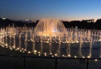 Les fontaines les plus célèbres (Moscou). fontaines Singing: description, photo