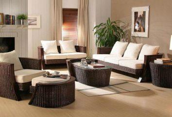 Mobilier moderne. Types de meubles et leurs principales caractéristiques