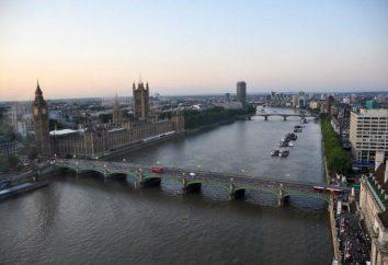 Río en Londres: nombre, descripción, características, flora y fauna