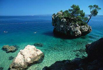 Makarska (Croatie): caractéristiques de la station, les vacanciers critiques