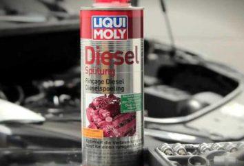 Reiniger Düsen für Dieselmotoren: eine Beschreibung und Bewertungen