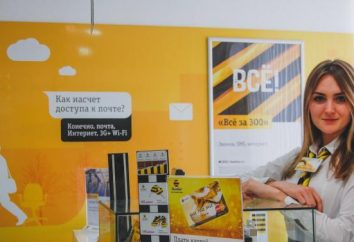 "La società ""Beeline"": un feedback sui dipendenti"