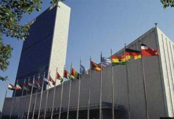 Il Consiglio di Sicurezza delle Nazioni Unite. membri permanenti del Consiglio di Sicurezza delle Nazioni Unite