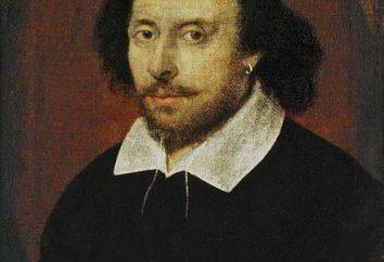 """""""Romeo i Julia"""": gatunek prac"""