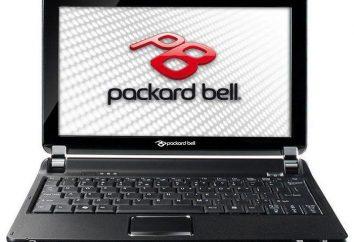 Netbook Packard Bell dot S: Características, descripción, fotos y comentarios