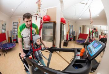 Exerciser brutto: opis i zastosowanie