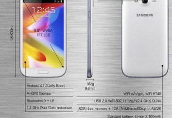 Smartphone Samsung Galaxy Wielki Duos GT-I9082: specyfikacje, opisy i recenzje