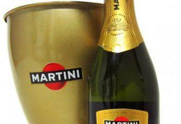 Escolha, bebida e um snack vinho espumante Prosecco Martini