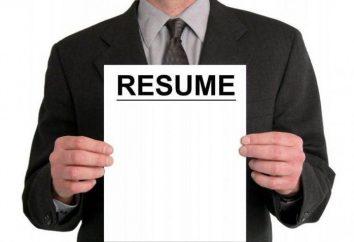 Os melhores locais para busca de trabalho: a lista de descrição e comentários