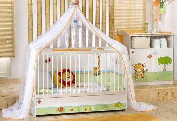 Kinderbett für Kleinkinder: Ranking des besten (Fotos)