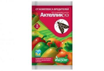 """Acaricidas con insecticida de amplio espectro """"aktellik"""": instrucciones de uso"""