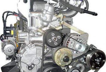 « Gazelle »: l'injecteur de moteur. Les avantages et les inconvénients, les caractéristiques techniques de l'injecteur