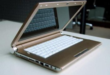 China Laptop: opiniones de clientes