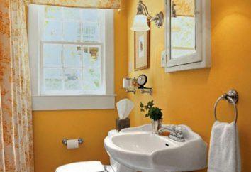 Zaprojektować małą łazienkę. Projektowanie małych rozmiarów toalety: zdjęcia