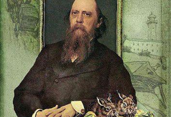 trucs satiriques dans les contes de fées Saltykov-Shchedrin