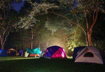 Campingplatz: neues Wissen und aktive Erholung im Freien