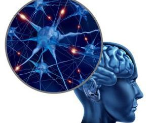 Vários métodos populares Sclerosis Treatment. Esclerose Múltipla: sintomas e tratamento