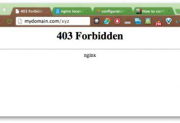 403 Prohibido Nginx: ¿qué es y cómo arreglar la situación?