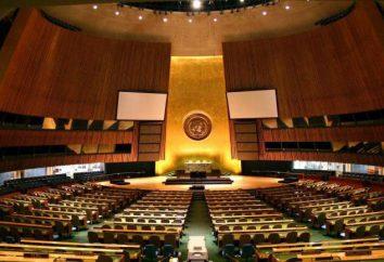 langues officielles de l'ONU. Quelle est la langue officielle de l'ONU?