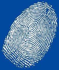 Fingerprinting – DNA-Profil ist …