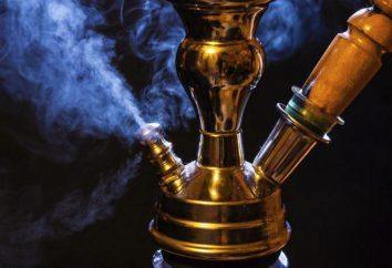 Hookah « Pharaon » – le plus haut niveau de performance