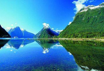 Wyspy Południowej Nowej Zelandii: opis, charakterystyka, natura i ciekawostki