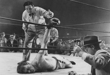 Boxeo – ¿qué es esto? Normas, la formación, concursos